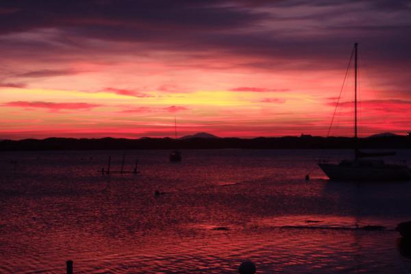 Pink sunset small straight
